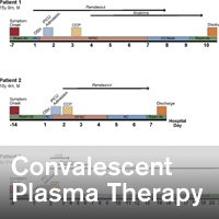 Convalescent Plasma Therapy in Four Critically Ill Pediatric Patients With Coronavirus Disease 2019: A Case Series - ~/sccm/media/covid19rl/COVID19-Convalescent-Plasma-Therapy.jpg?ext=.jpg