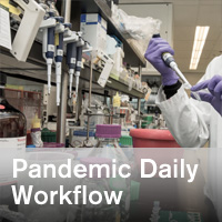 Ramifications of COVID-19 Pandemic on Pharmacy Daily Workflow - ~/sccm/media/covid19rl/COVID19-Ramifications-of-COVID-19-Daily-Workflow.jpg?ext=.jpg